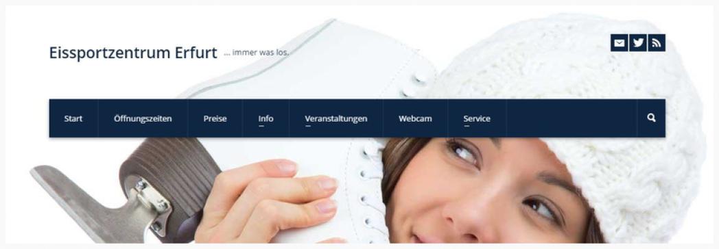 www.gunda-niemann-stirnemann-halle.de